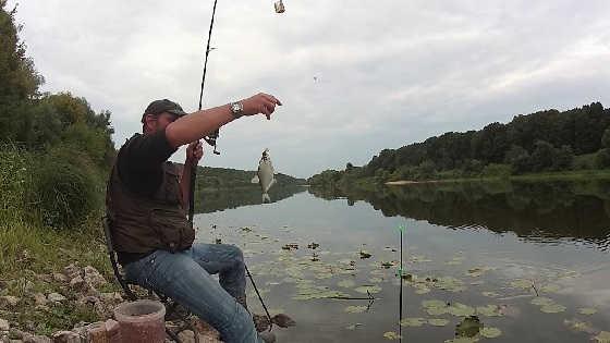 Рыбалка на Оке на фидер 2019