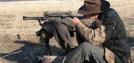 Подготовка оружия и патронов перед охотой