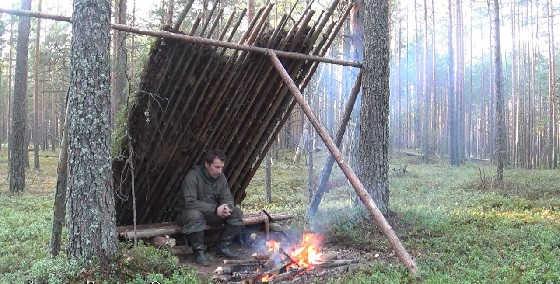 Укрытие от дождя в сосновом лесу из природных материалов