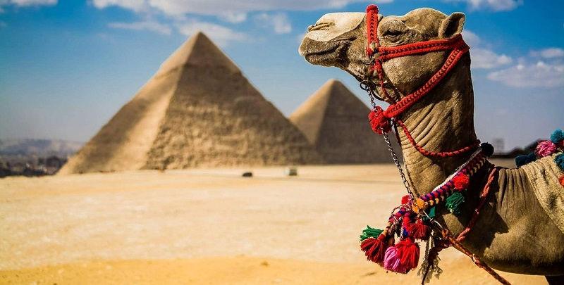 Египет: курорты, экскурсии