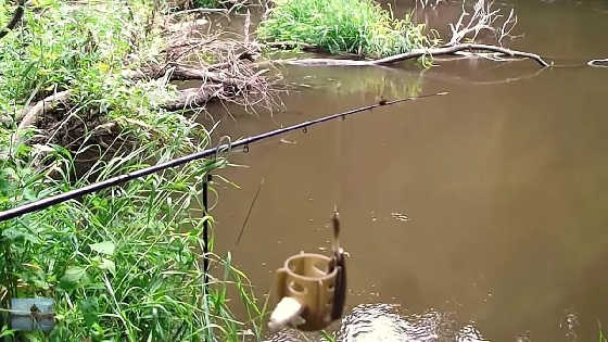 Рыбалка на Фидер на Самодельную Прикормку