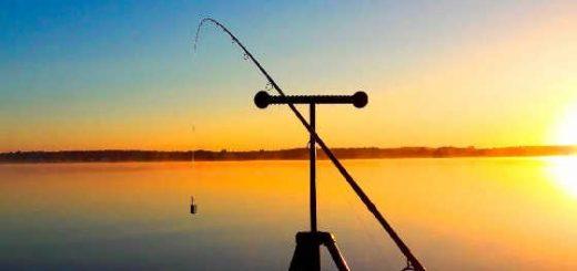 фидерная ловля на водоеме без течения