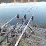 Ловля карпа в холодной воде