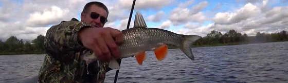 Клёвая рыбалка в сентябре 2019