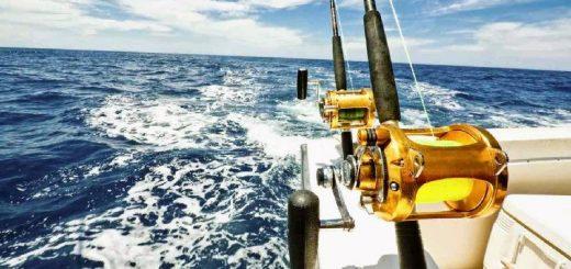 Морская рыбалка в Шарм Эль Шейхе