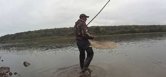 Осенняя Рыбалка на Живца 2019