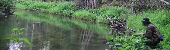 На таёжной речке