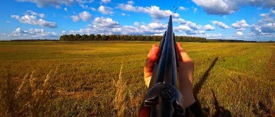 Шикарная охота на вяхиря