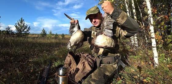 Охота на утку и рябчика с подхода с собакой