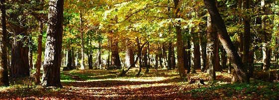 Осенний двухдневный поход