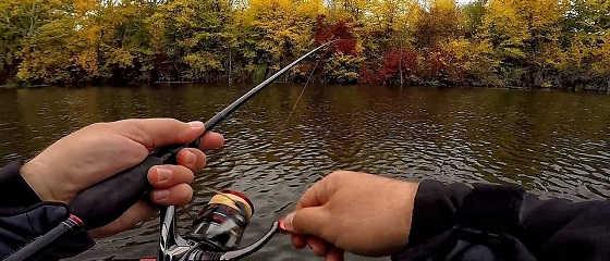 Ловля щуки и окуня осенью на микроджиг