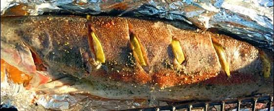 2 рецепта шашлыка из рыбы-форель на мангале