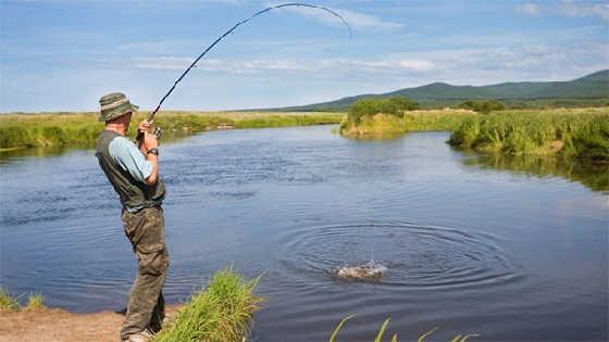 На что лучше клюёт рыба