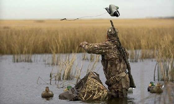 Охота на утку с чучелами осенью