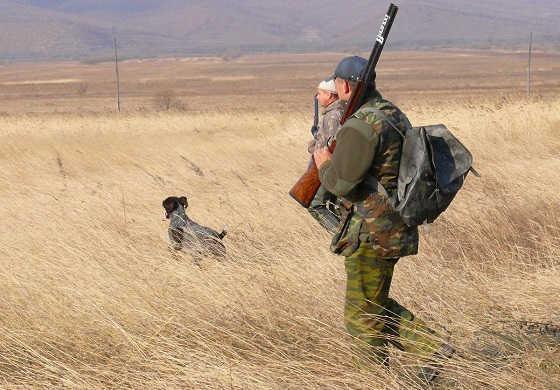 Нахождение в угодьях с оружием вне сроков охоты