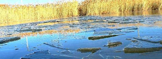 охота на утку и первый лед