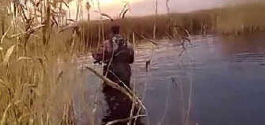 Охота в Сибири: Чирковый рай