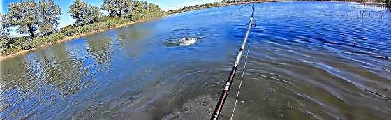 Осенняя Рыбалка на Щуку и Судака 2019
