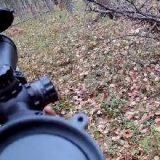 Охота с пневматикой на рябчика