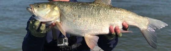 Рыбалка в Маково
