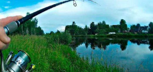 Рыбалка на спиннинг с берега