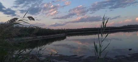 Охота на утку - Топарские озера