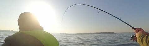 Черноморская рыбка ГНЁТ спиннинги