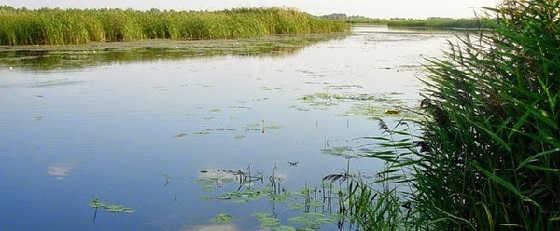 Рыбалка в дельте Днепра