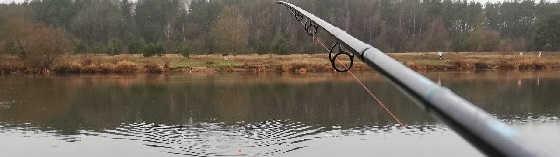 Фидерная ловля на течении