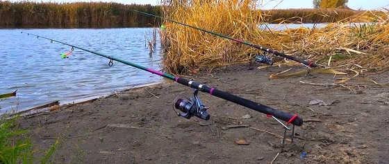 Рыбалка на Фидер в Ноябре 2019