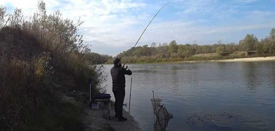 Рыбалка в Астрахани на фидер в октябре