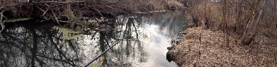Голодные Щуки в Маленькой Речке