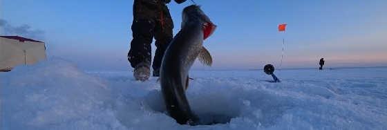 Рыбалка на жерлицы в Якутии