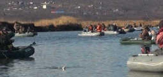Рыбалка корюшки и наваги с лодок