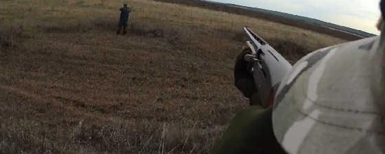 Охота на зайцев с опытным зайчатником