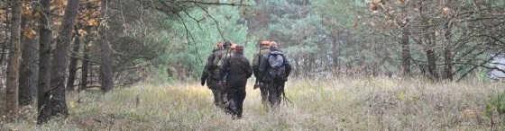 Открытие загонной охоты на копытных 2019