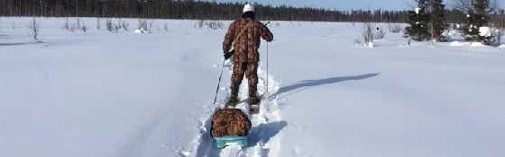 Отпуск в тайге: Охота и Рыбалка