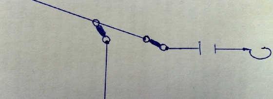 Отводной поводок: тонкости