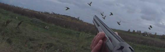 Стрельба влет по уткам летящим на жировку