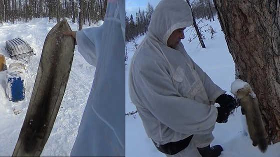 Промысел соболя в Якутии
