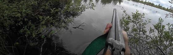 Охота на рябчика и утку с подхода