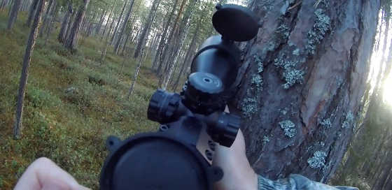 Охота с мелкашкой по рябчику