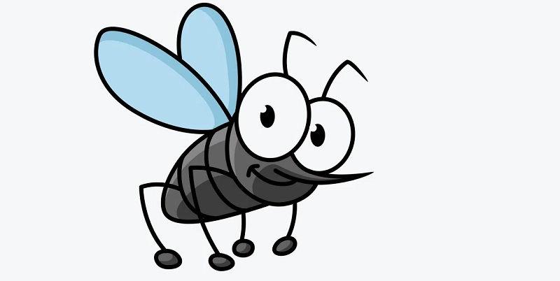 Как бороться с насекомыми?