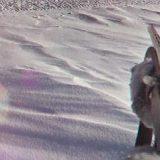 Охота на Сибирского зайца троплением