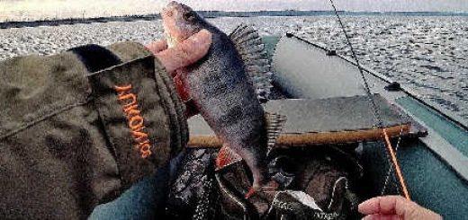 Окунь на рака от Crazy Fish