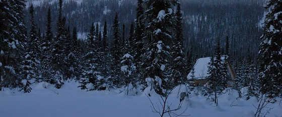 Поход в Сибирский лес