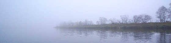 Поведение рыбы поздней осенью и зимой