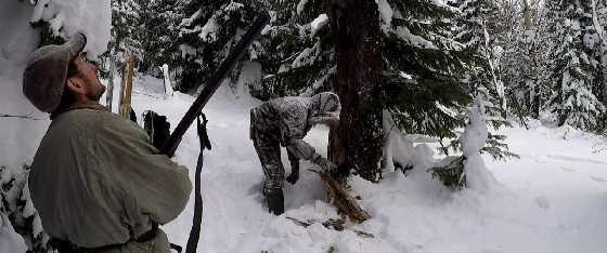 Промысел соболя в Якутии зимой