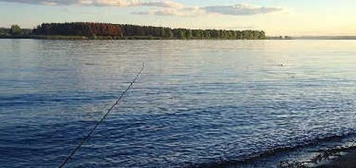 Рыбалка в Ярославле на Волге
