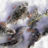 Зимняя Рыбалка на Балду 2019